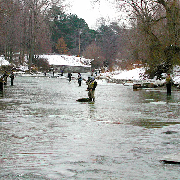 Fishermen on Walnut Creek in Erie, PA